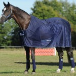 Competition-Cooler-Navy